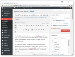 wordpress-wysiwyg-editor